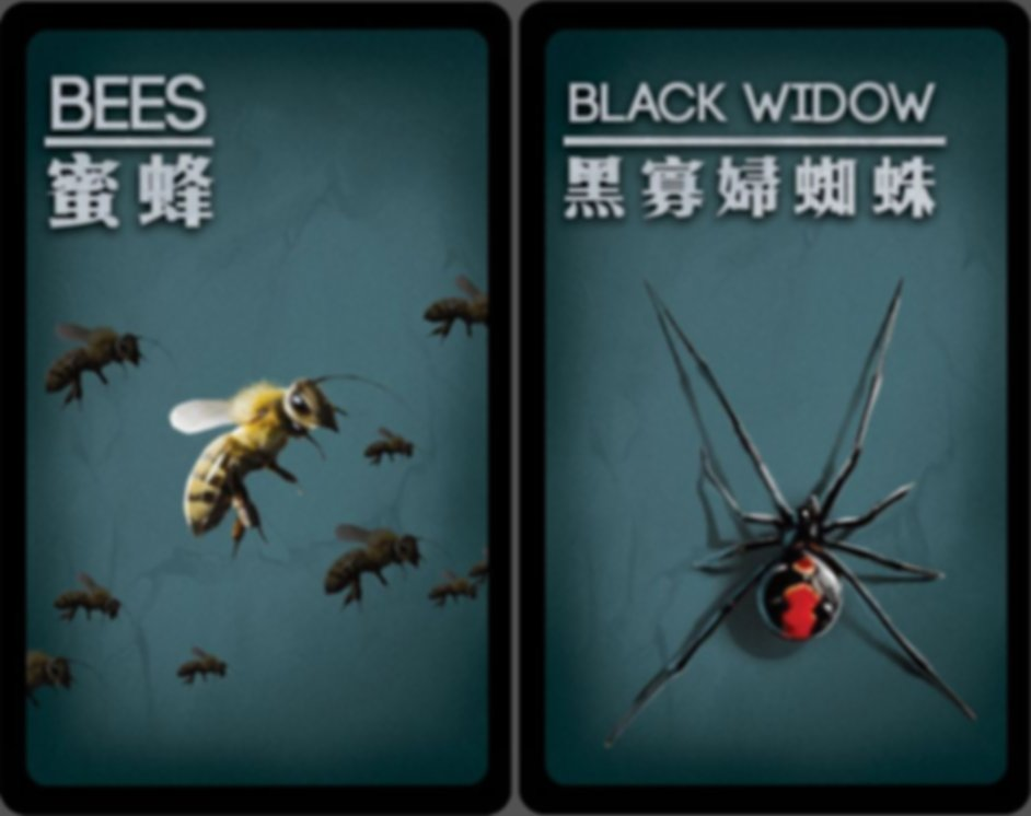 Deception: Undercover Allies cards