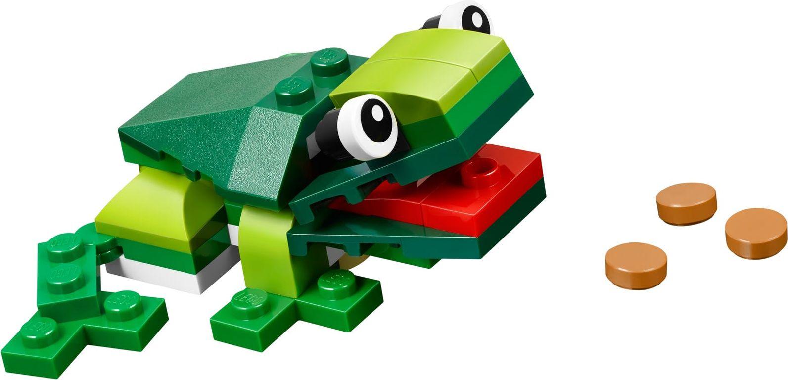 Rainforest Animals components