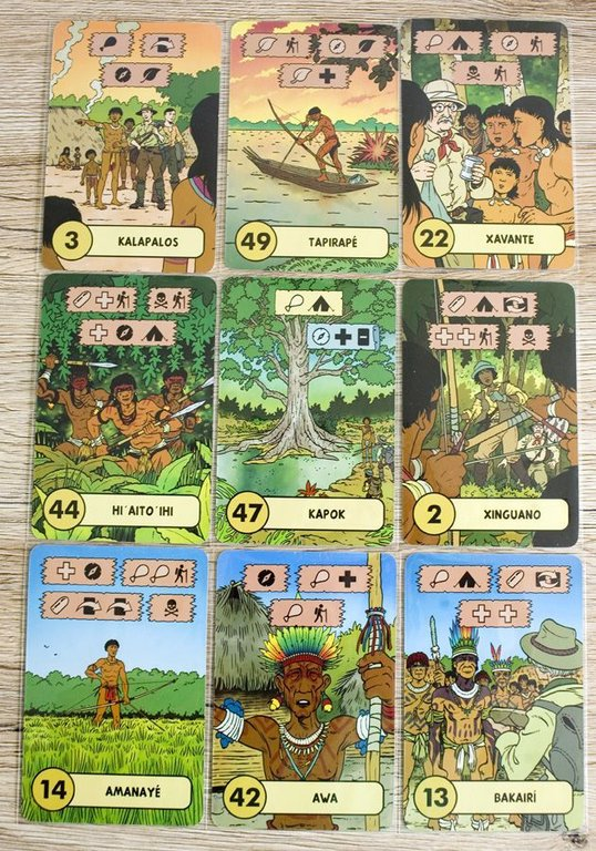 The Lost Expedition cards