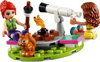 Nature Glamping minifigures