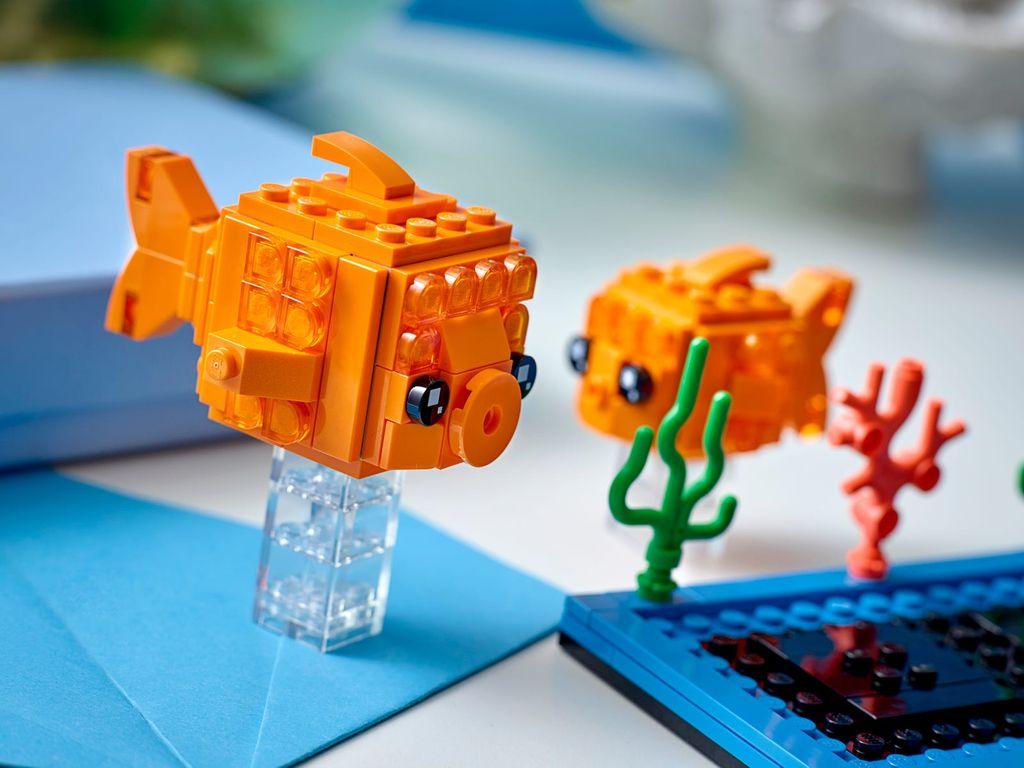 Goldfish components
