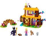 Aurora's Forest Cottage components