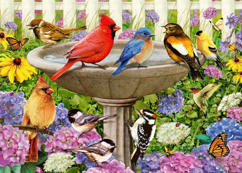 At The Birdbath