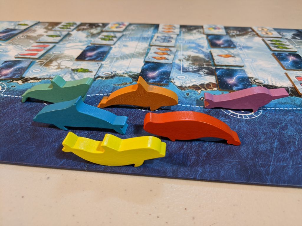 Whale Riders components