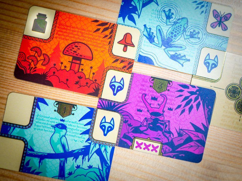 CODEX Naturalis cards